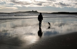 Embleton Beach part of the Northumberland Heritage Coast